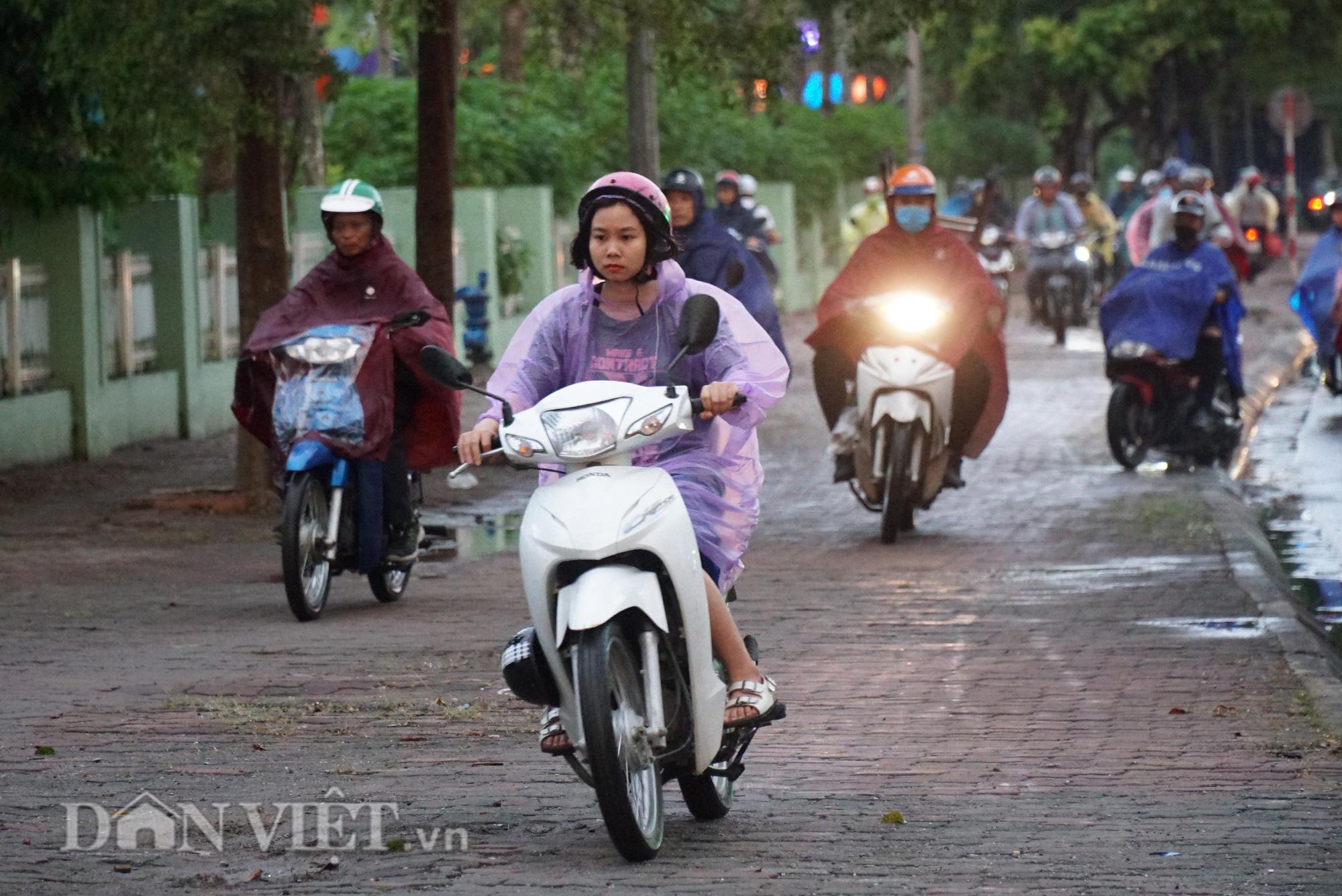 Hà Nội giảm 10 độ sau cơn mưa vàng - Ảnh 8.
