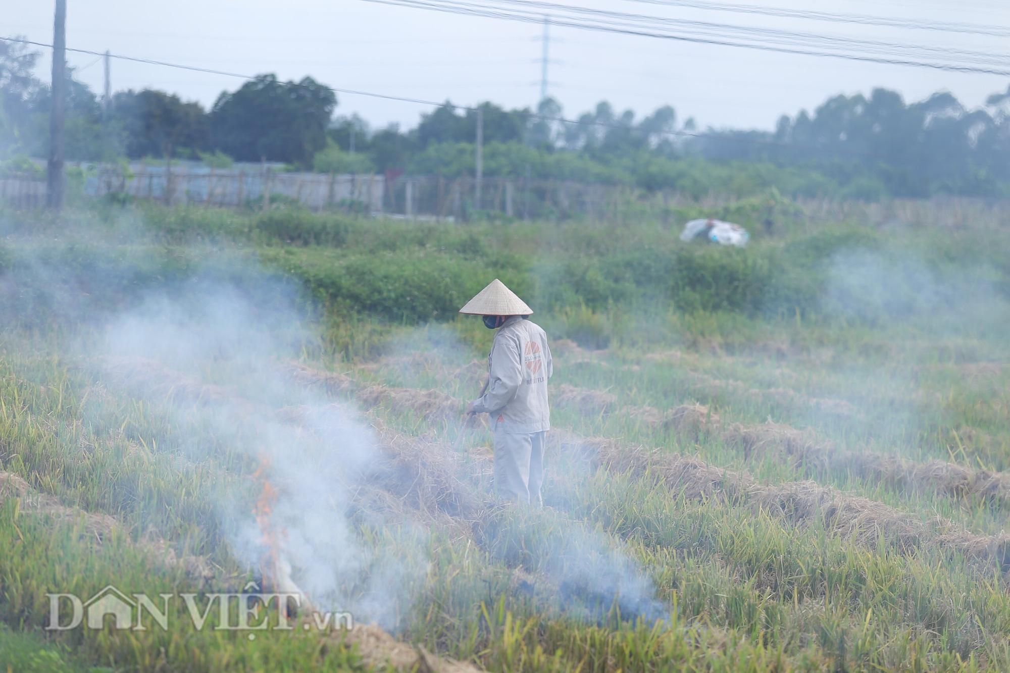 Khói trắng mù mịt bủa vây khu dân cư do người dân đốt rơm rạ - Ảnh 10.