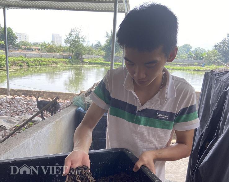 Gã kỹ sư trẻ gàn dở biến ấu trùng ruồi thành vàng - Ảnh 4.