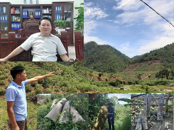 """Phú Thọ: Đi tìm nguyên nhân hơn 1.000ha rừng tự nhiên bị... """"biến mất"""" - Ảnh 3."""