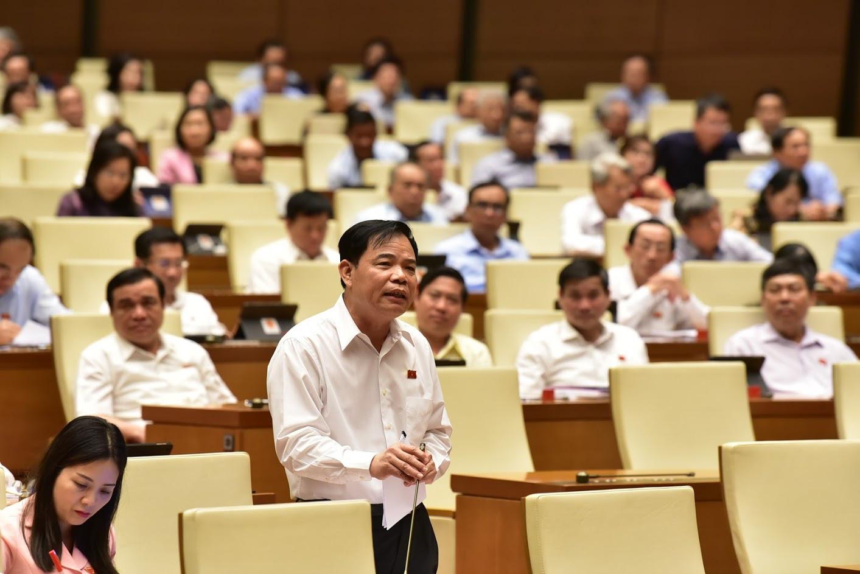 Bộ trưởng Bộ Nông nghiệp: Giá lợn hơi sẽ giảm khi nhập khẩu lợn sống từ Thái Lan - Ảnh 1.