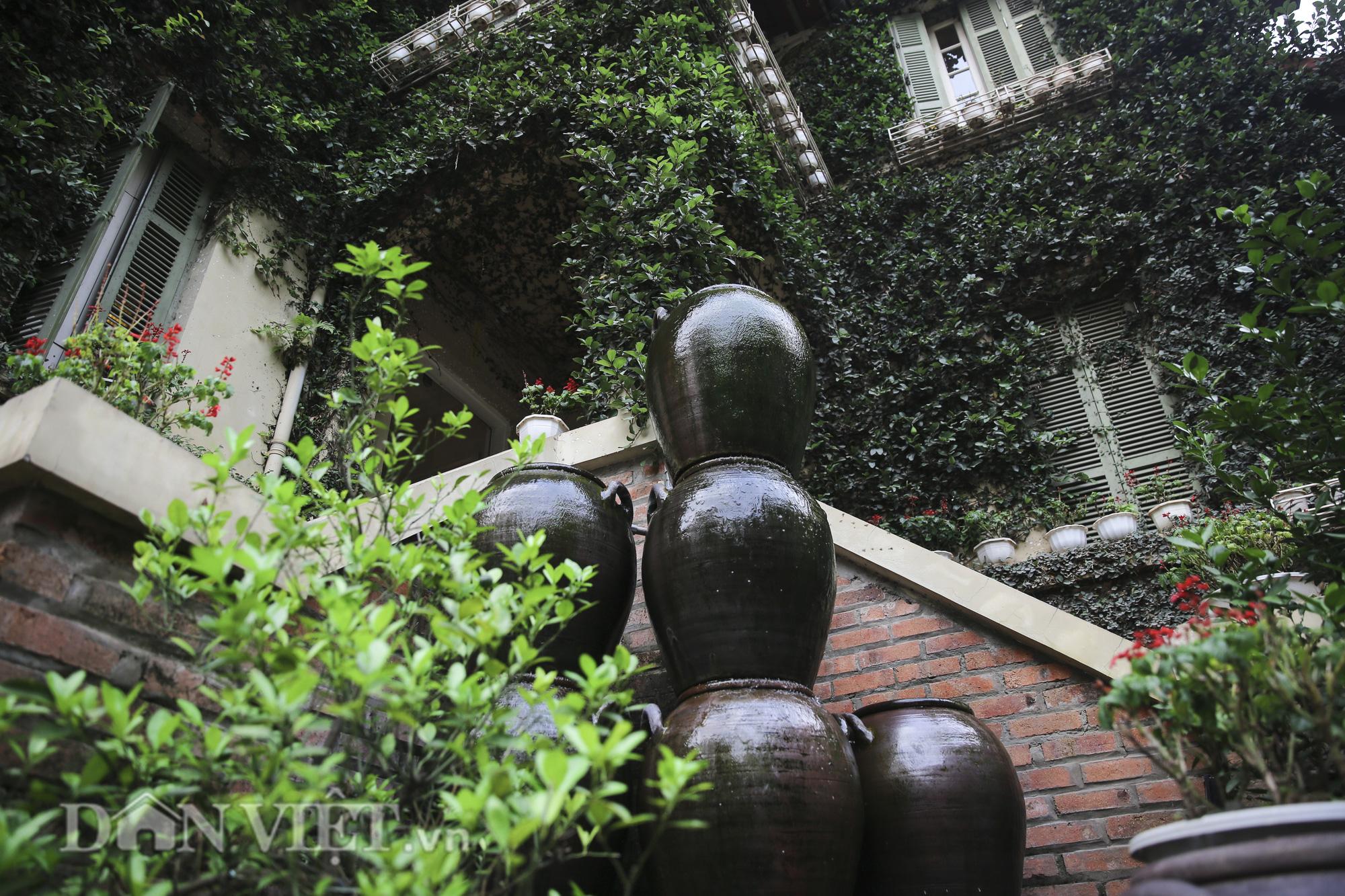 """Chiêm ngưỡng căn biệt thự được """"ngụy trang"""" bởi cây xanh giữa lòng Hà Nội - Ảnh 2."""