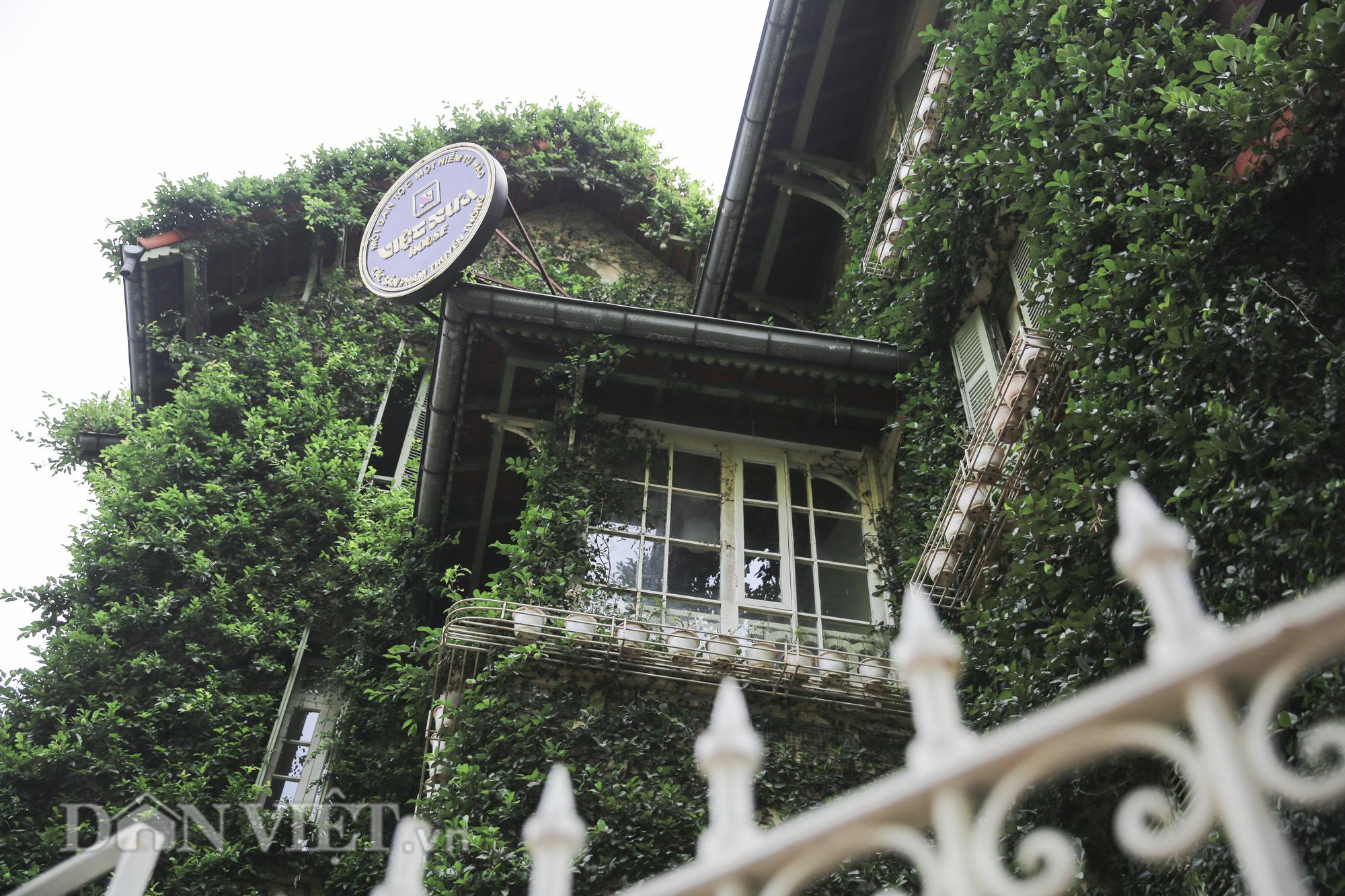 """Chiêm ngưỡng căn biệt thự được """"ngụy trang"""" bởi cây xanh giữa lòng Hà Nội - Ảnh 7."""