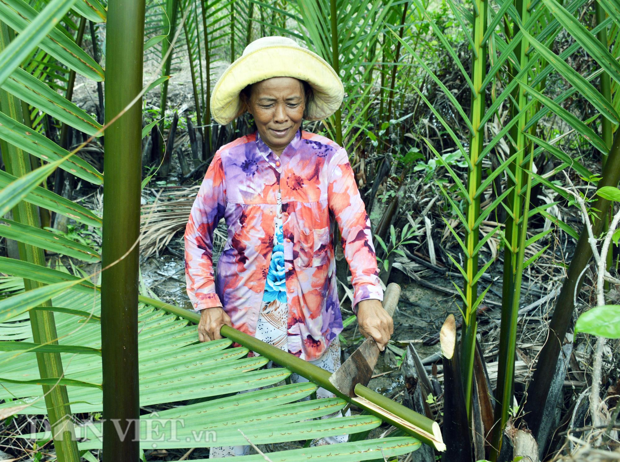 Cà Mau: Vợ chồng U70 xin được thoát nghèo - Ảnh 3.
