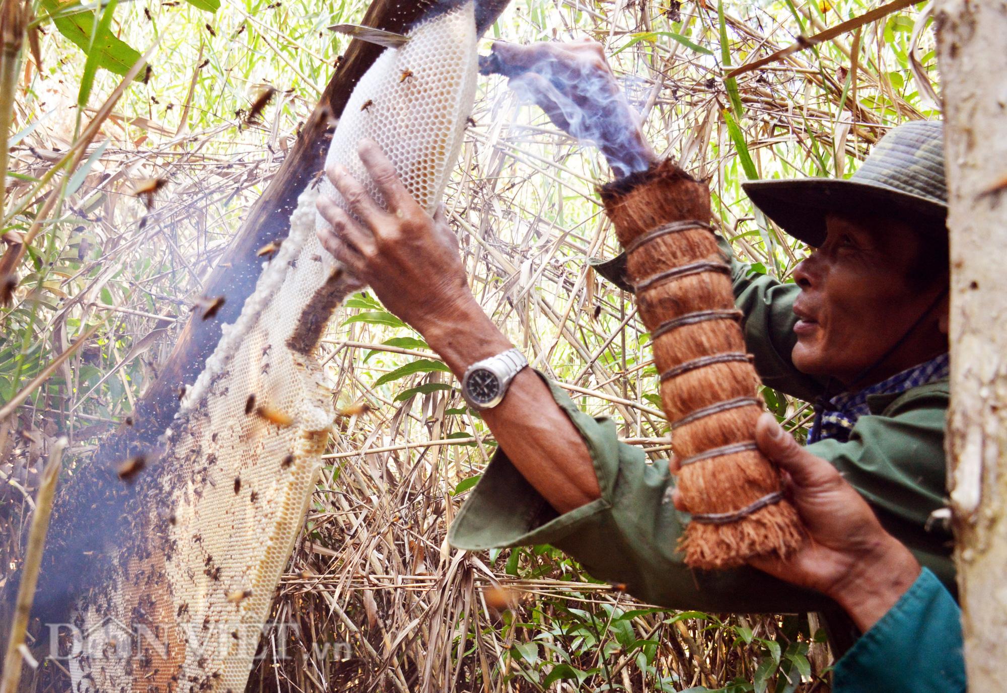 Nghề gác kèo ong được công nhận di sản văn hóa phi vật thể cấp Quốc gia - Ảnh 1.