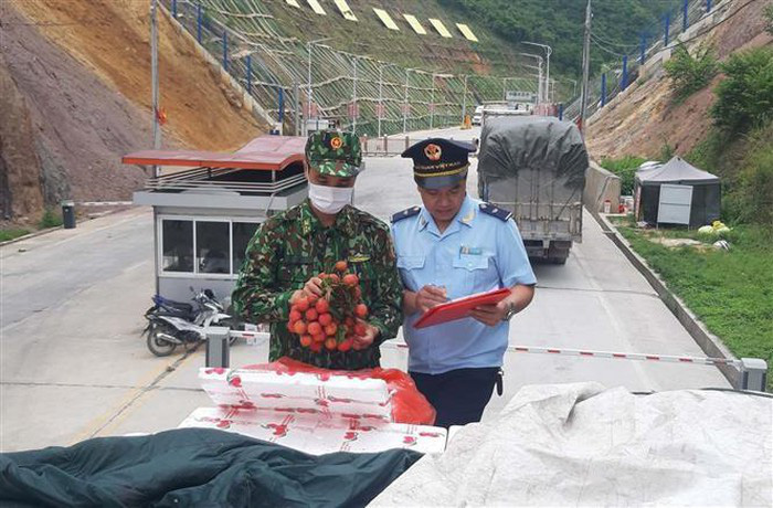 Xuất khẩu 13.500 tấn vải thiều tươi qua cửa khẩu Tân Thanh, Lạng Sơn - Ảnh 4.