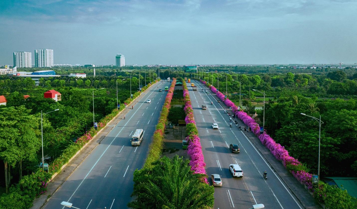 Vệt hoa giấy nhuộm tím một góc khu đô thị Ecopark - Ảnh 13.