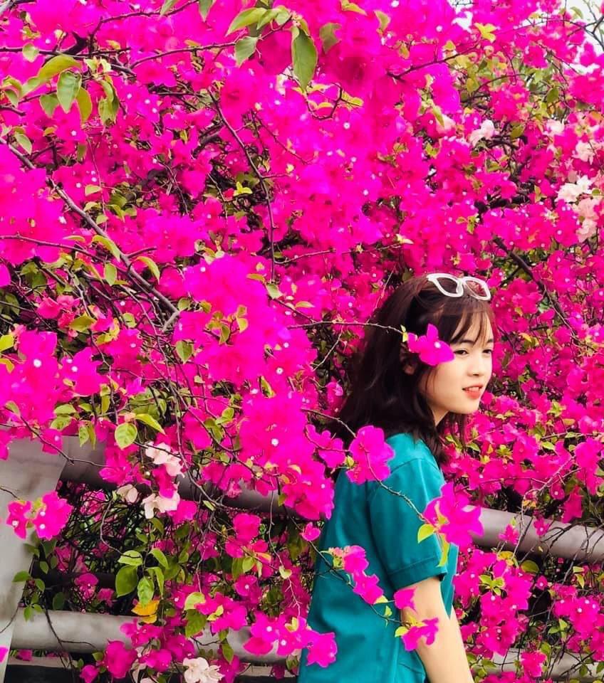 Vệt hoa giấy nhuộm tím một góc khu đô thị Ecopark - Ảnh 16.