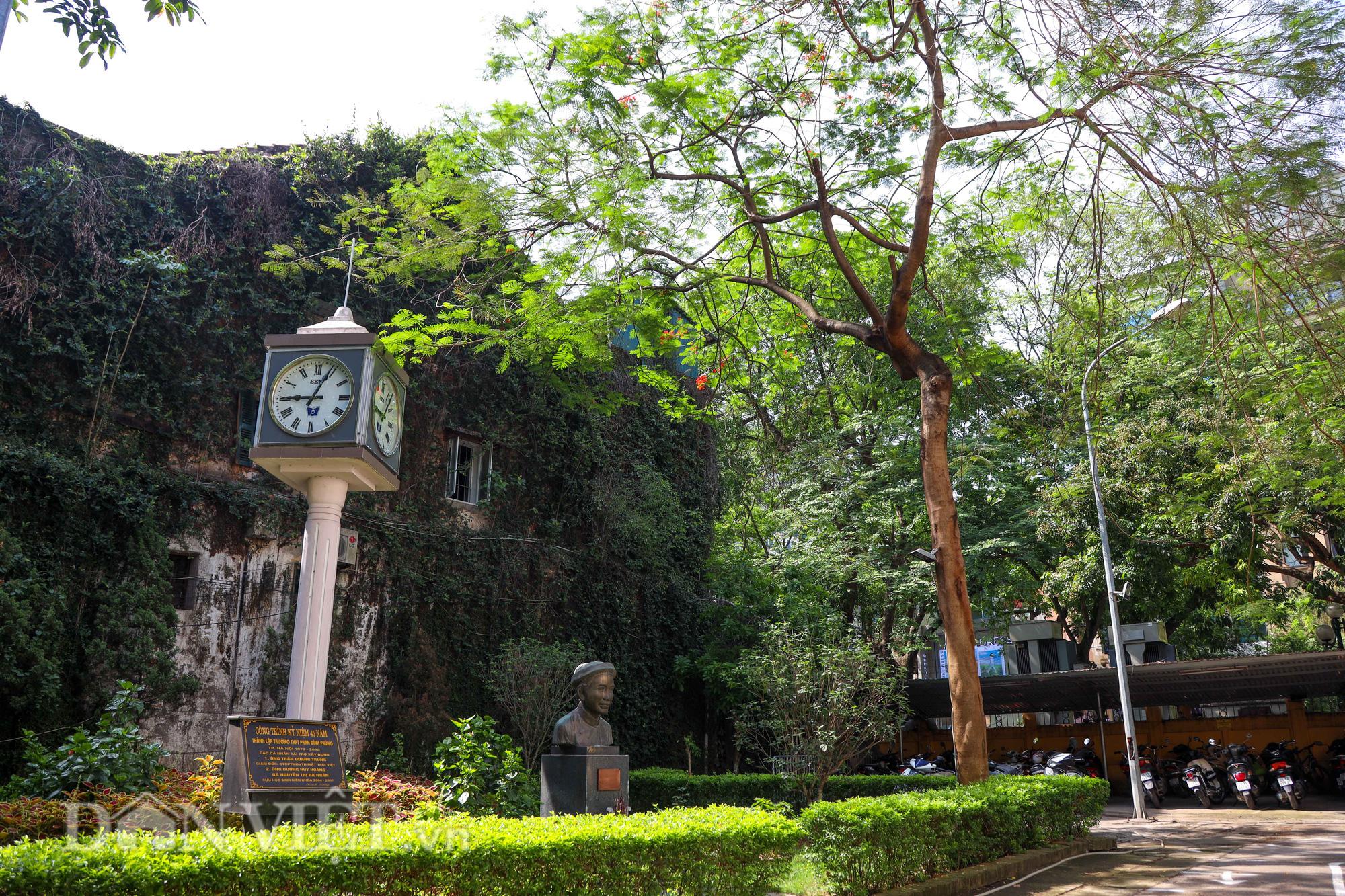 Học sinh Hà Nội không hề lo sợ dù ngồi giữa sân trường đầy cây cổ thụ - Ảnh 2.