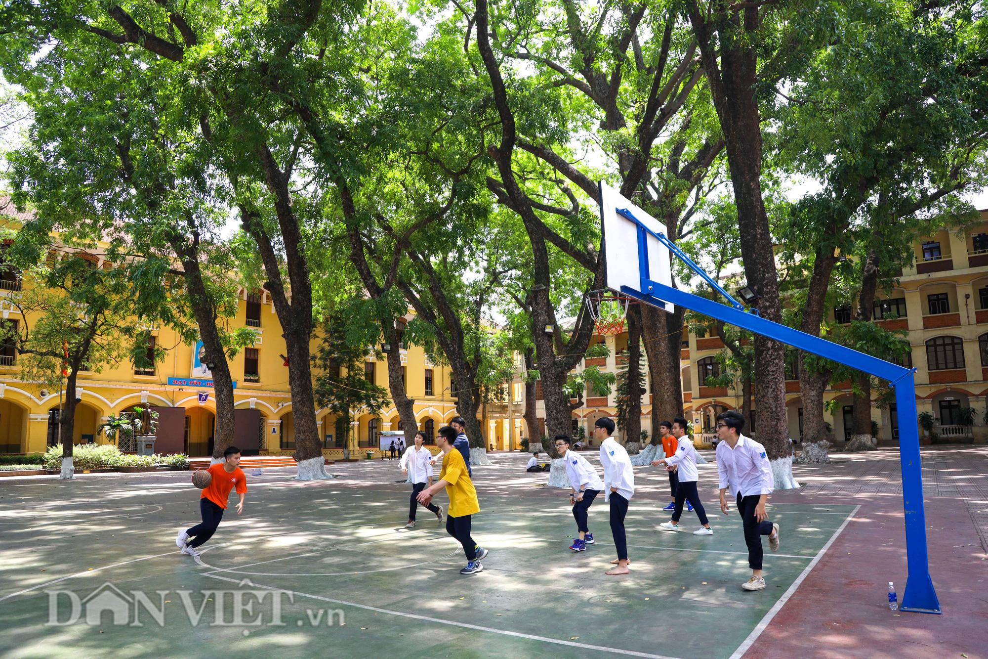 Học sinh Hà Nội không hề lo sợ dù ngồi giữa sân trường đầy cây cổ thụ - Ảnh 7.