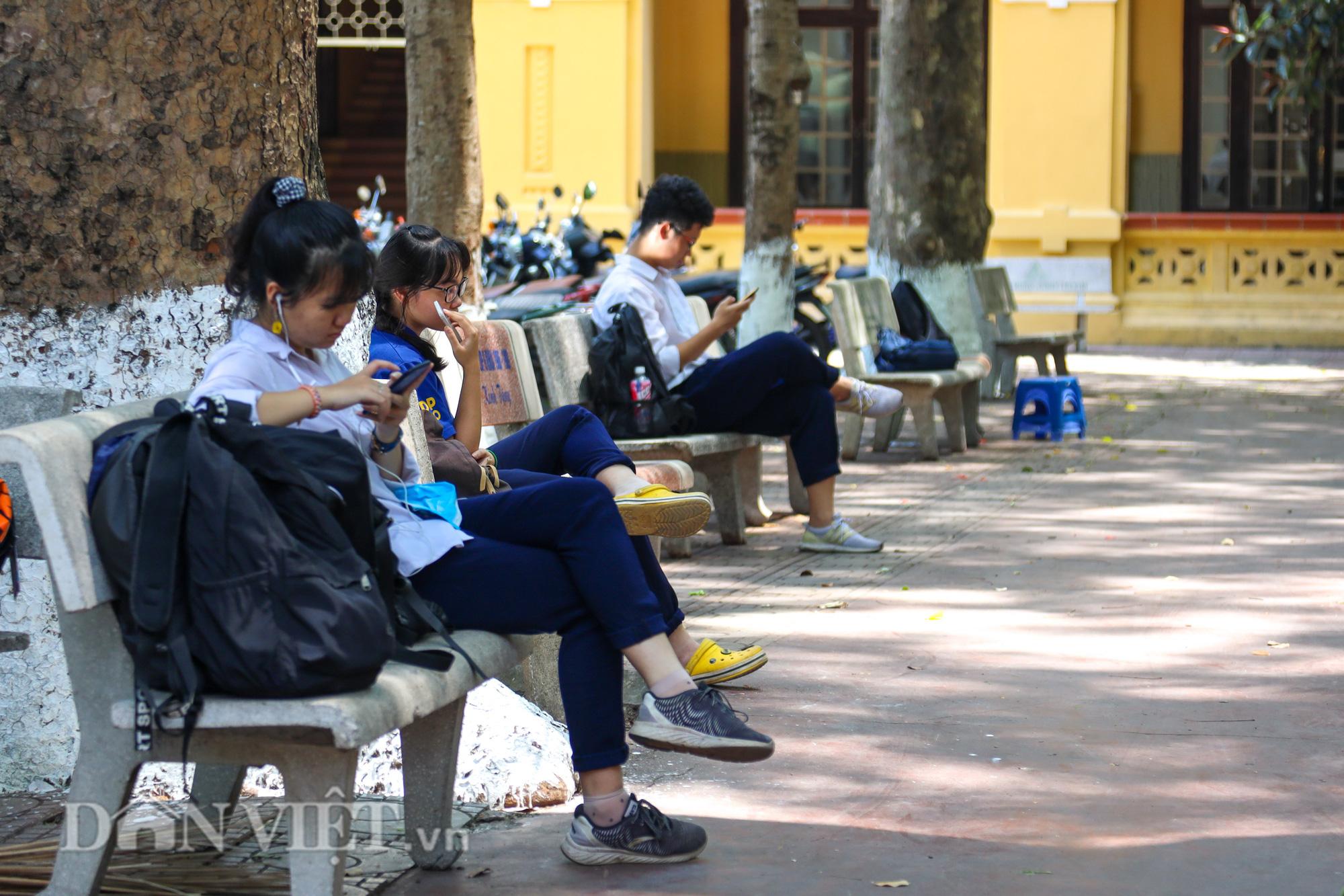 Học sinh Hà Nội không hề lo sợ dù ngồi giữa sân trường đầy cây cổ thụ - Ảnh 8.