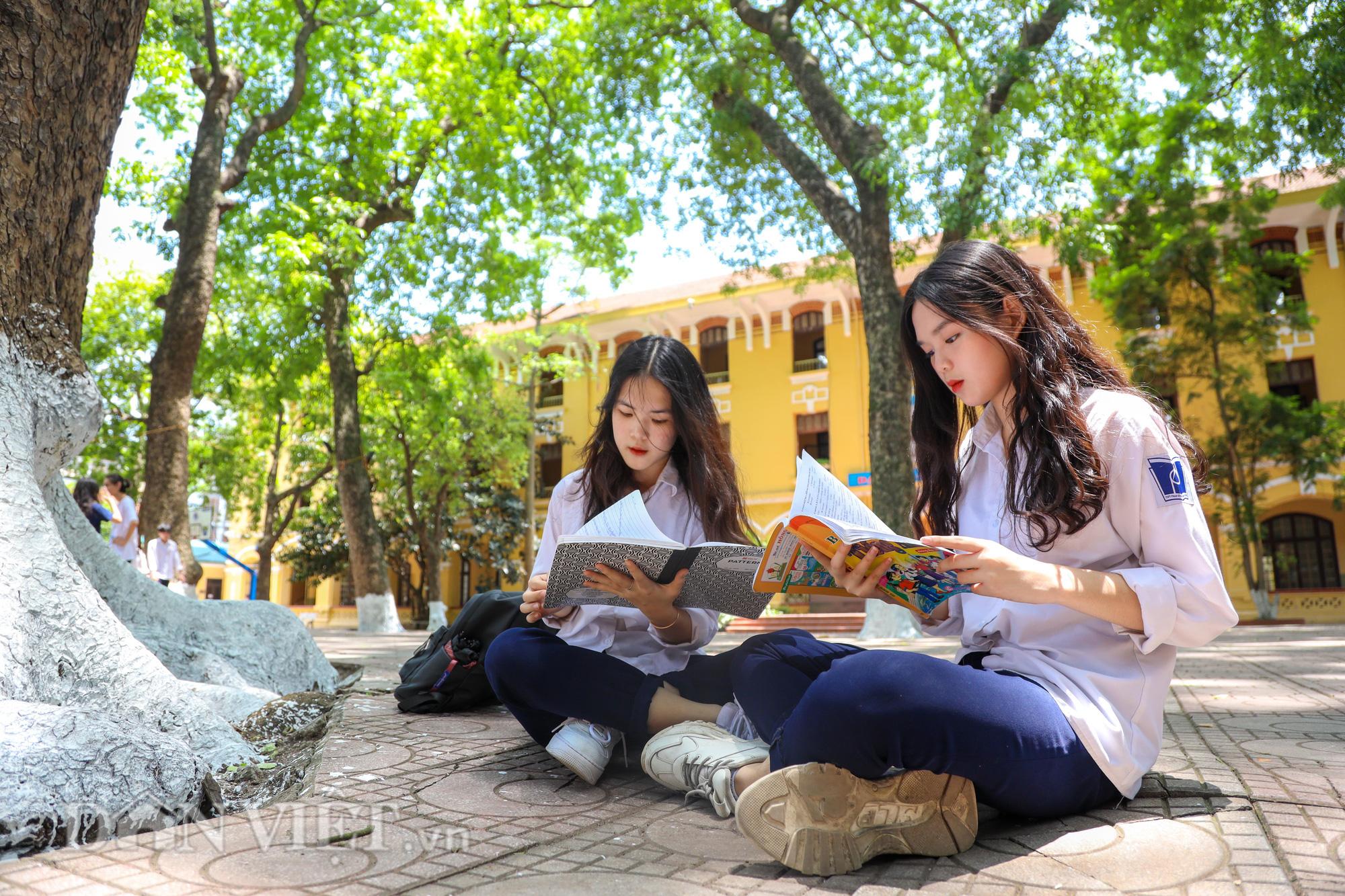 Học sinh Hà Nội không hề lo sợ dù ngồi giữa sân trường đầy cây cổ thụ - Ảnh 10.