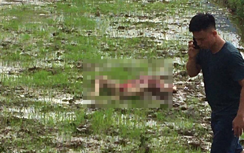 NÓNG: Xảy ra thảm án 3 người tử vong ở Điện Biên