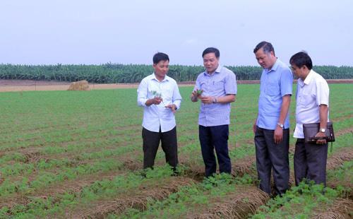 Bắc Ninh: Hỗ trợ hộ viên nuôi cá lồng, trồng cà rốt xuất khẩu - Ảnh 1.