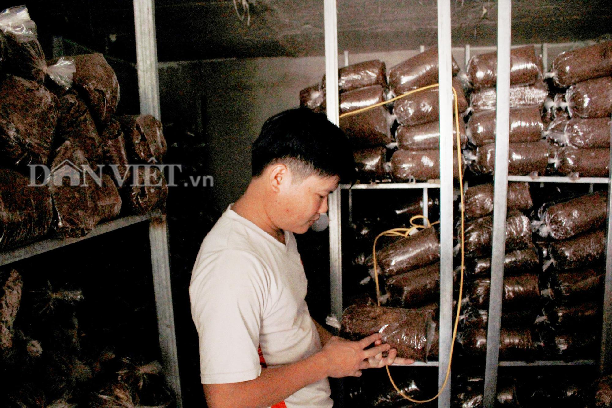 Hà Tĩnh: Chàng trai mồ côi đổi đời nhờ trồng nấm - Ảnh 3.
