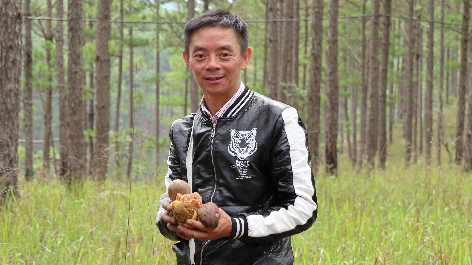 """""""Săn"""" nấm đặc sản giữa mùa mưa Đà lạt - Ảnh 2."""