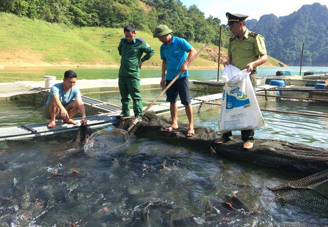 Tuyên Quang: Kéo mẻ lưới lên toàn thấy cá đặc sản to bự, nông dân giàu thấy rõ - Ảnh 1.