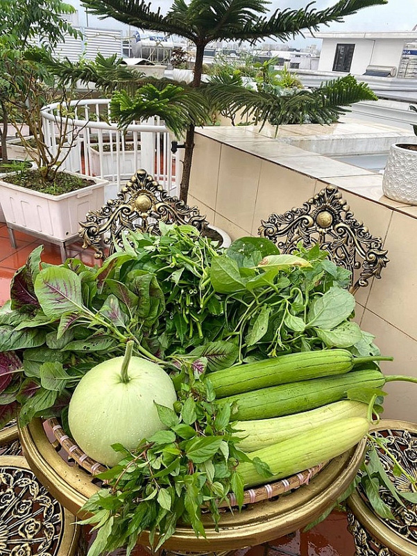 Đủ loại rau, củ và nuôi cá trên sân thượng biệt thự triệu đô của mẹ đảm Hải Phòng - Ảnh 6.
