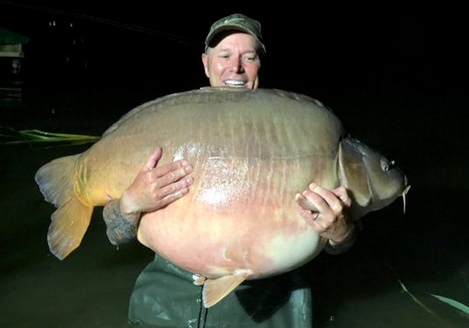 Cá 51 kg cắn câu cần thủ - Ảnh 1.