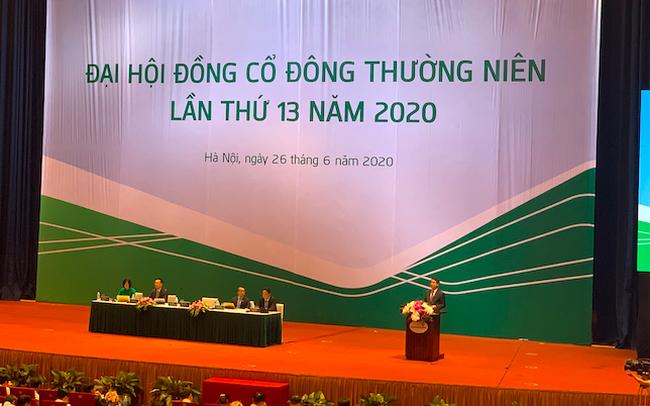 Chủ tịch Nghiêm Xuân Thành: Tài chính Vietcombank rất vững chắc - Ảnh 1.