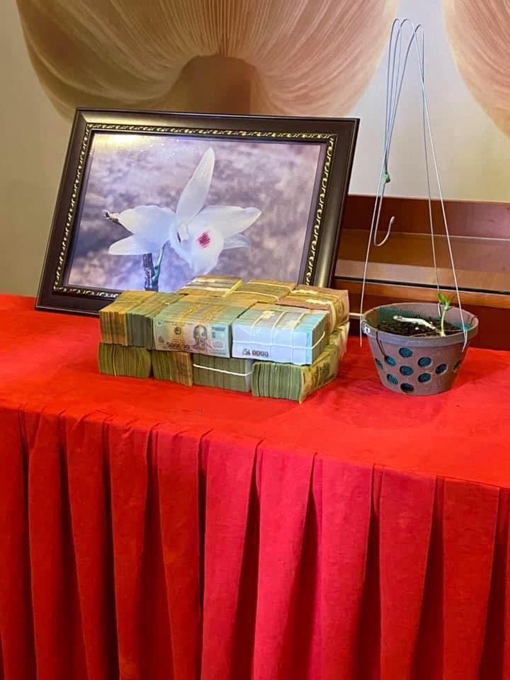 Chiêm ngưỡng cây lan Bảo Duy 5 cánh trắng giá  5,6 tỷ đồng của đại gia Thái Nguyên - Ảnh 2.
