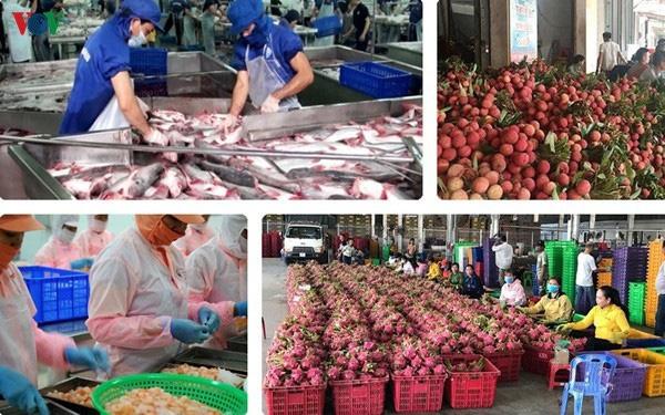 6 tháng đầu năm, xuất siêu nông sản 4,5 tỷ USD  - Ảnh 1.