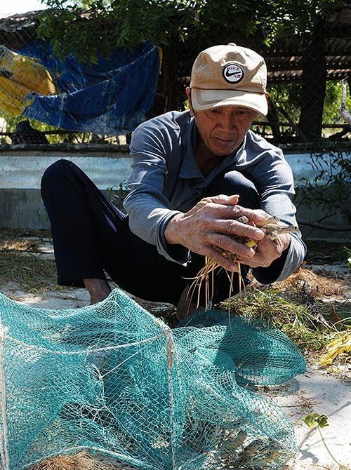 Ninh Thuận: Nuôi dông cát bán hoang dã trên vùng sa mạc, tiền lời cao gấp 3 lần nuôi bò - Ảnh 8.