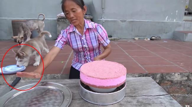 Bà Tân Vlog lấy đĩa từng bị cún cưng liếm qua đựng bánh mời các cháu khiến người xem ngao ngán - Ảnh 3.