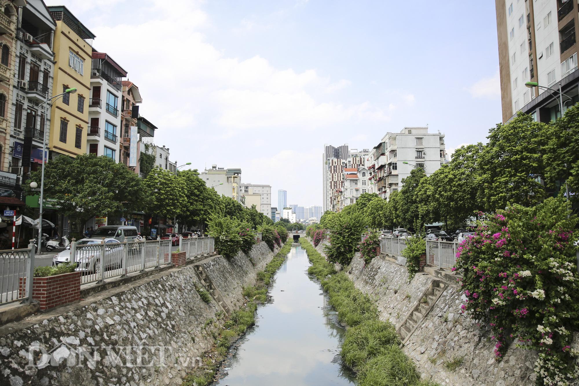 """Hệ thống cây xanh đã giúp Hà Nội giảm """"hiệu ứng đảo nhiệt đô thị"""" như thế nào? - Ảnh 1."""