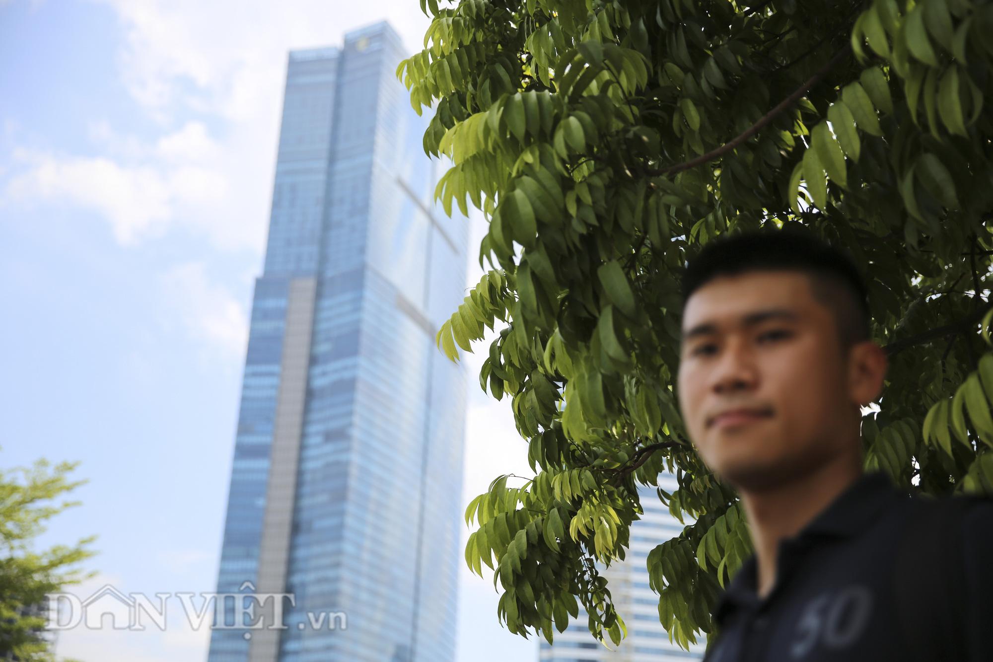 """Hệ thống cây xanh đã giúp Hà Nội giảm """"hiệu ứng đảo nhiệt đô thị"""" như thế nào? - Ảnh 4."""