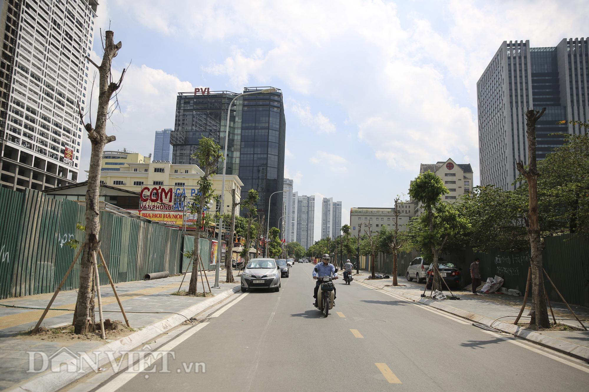 """Hệ thống cây xanh đã giúp Hà Nội giảm """"hiệu ứng đảo nhiệt đô thị"""" như thế nào? - Ảnh 9."""