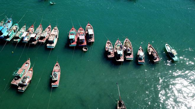 Đề xuất thí điểm mở cửa cho khách quốc tế vào Phú Quốc - Ảnh 2.