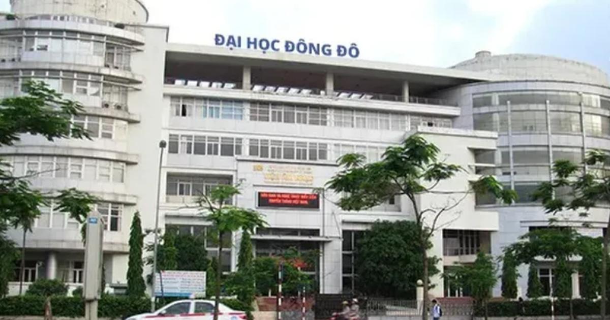 Bộ Công an khởi tố, bắt nữ trưởng phòng của Đại học Đông Đô - Ảnh 1.