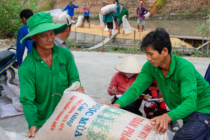 Giữa tháng 6 có kết luận thanh tra xuất khẩu gạo - Ảnh 1.