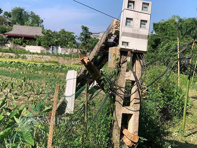 Sau phản ánh của Dân Việt: Cột điện gãy gập ở Bắc Kạn được khắc phục - Ảnh 2.