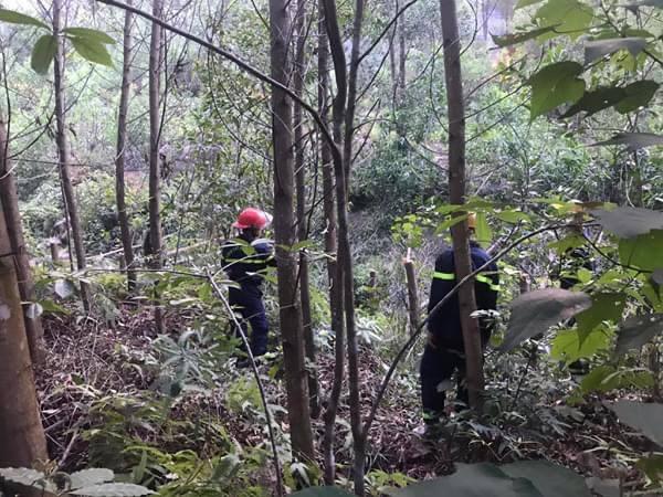 Nghệ An: Trắng đêm khống chế cháy rừng, thiệt hại 4ha    - Ảnh 3.