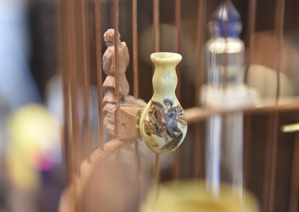 Bộ sưu tập chim giá tiền tỷ của vua chim màu Việt: Đắt đỏ, quý hiếm, đẳng cấp nhất Việt Nam - Ảnh 10.