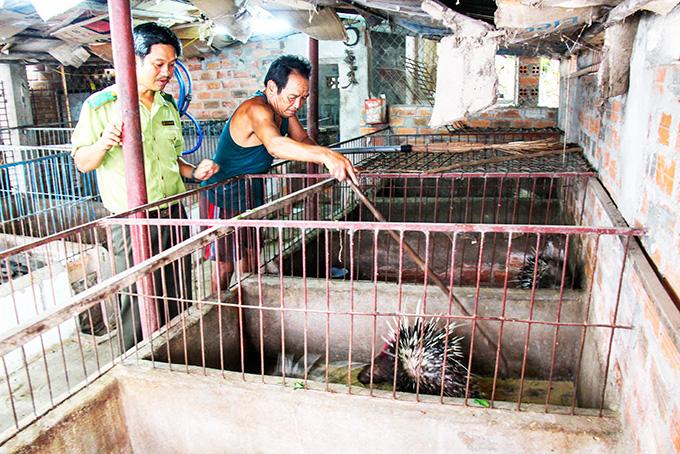 Khánh Hòa: Nuôi động vật rừng-1 thời nóng sốt tôn lên đặc sản nay buồn thiu thế này - Ảnh 2.