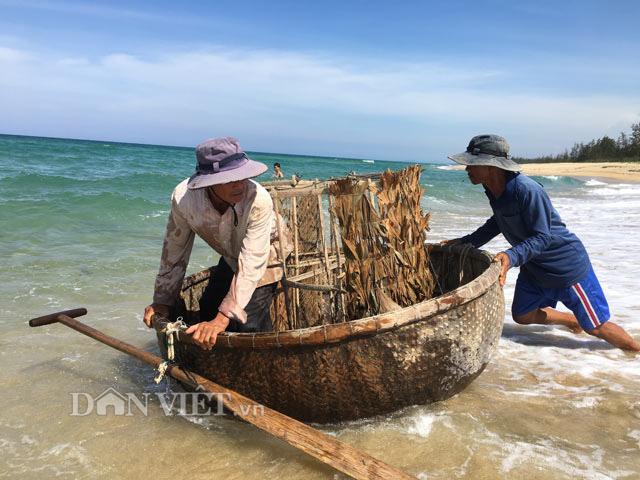 Quảng Ngãi: Độc đáo nghề bắt mực bằng bóng  - Ảnh 4.