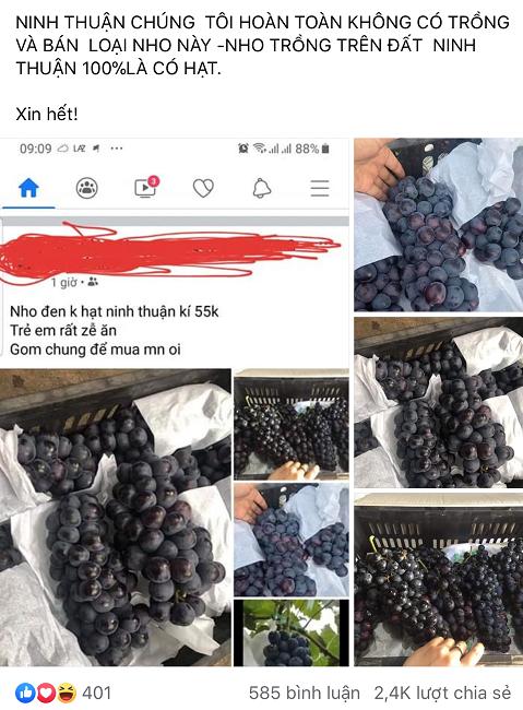 """Nho đen Tàu đội lốt nho Ninh Thuận, dân buôn """"vạch mặt"""" sự thật bất ngờ - Ảnh 5."""