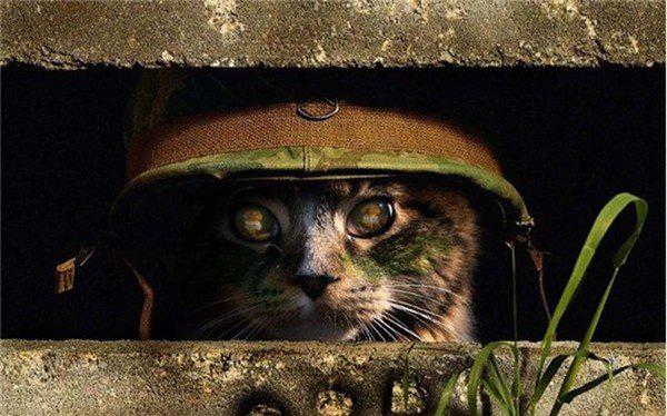 4 chiến thuật quân sự có 1-0-2 trong lịch sử chỉ thiên tài mới nghĩ ra - Ảnh 1.