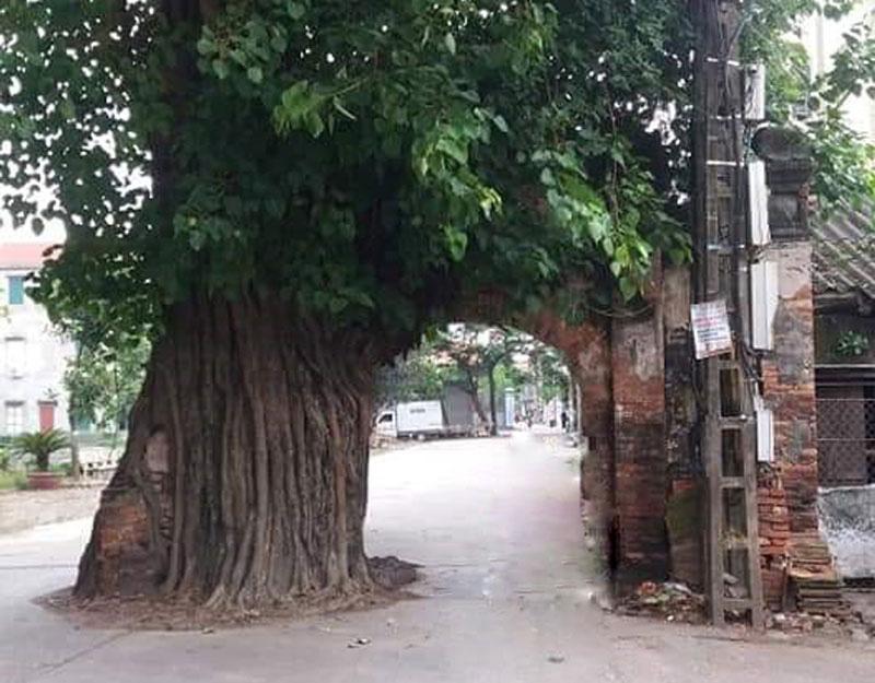 """Hóa ra cổng làng rêu phong vào phim """"Làng Vũ Đại ngày ấy"""" không phải ở tỉnh Hà Nam - Ảnh 1."""