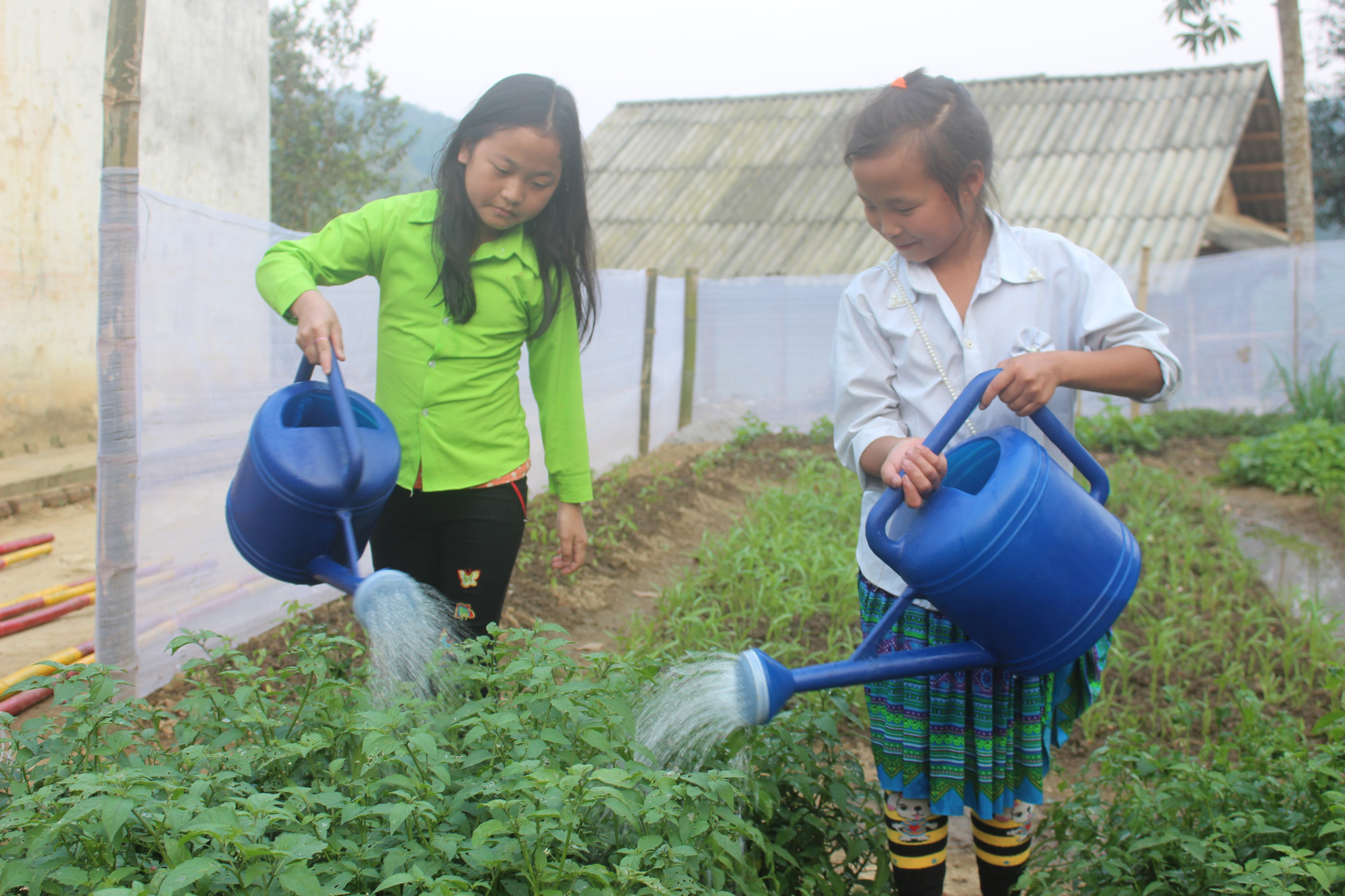Dân Việt - Hành trình  10 năm thiện nguyện - Ảnh 6.