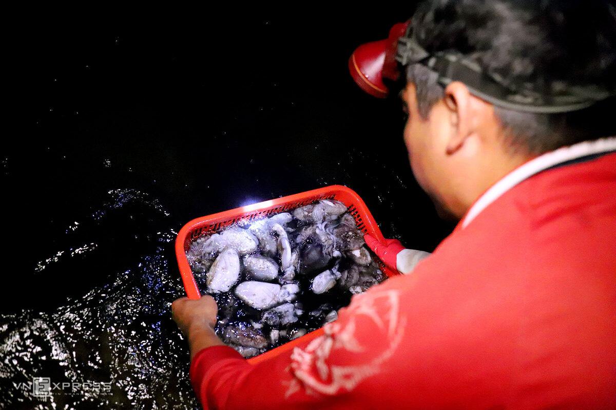 Chợ hải sản 600 năm tuổi bên bờ kè - Ảnh 4.