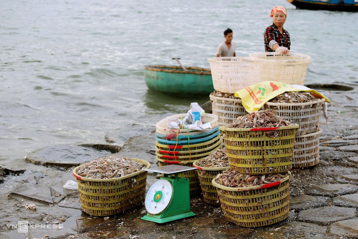 Chợ hải sản 600 năm tuổi bên bờ kè - Ảnh 7.