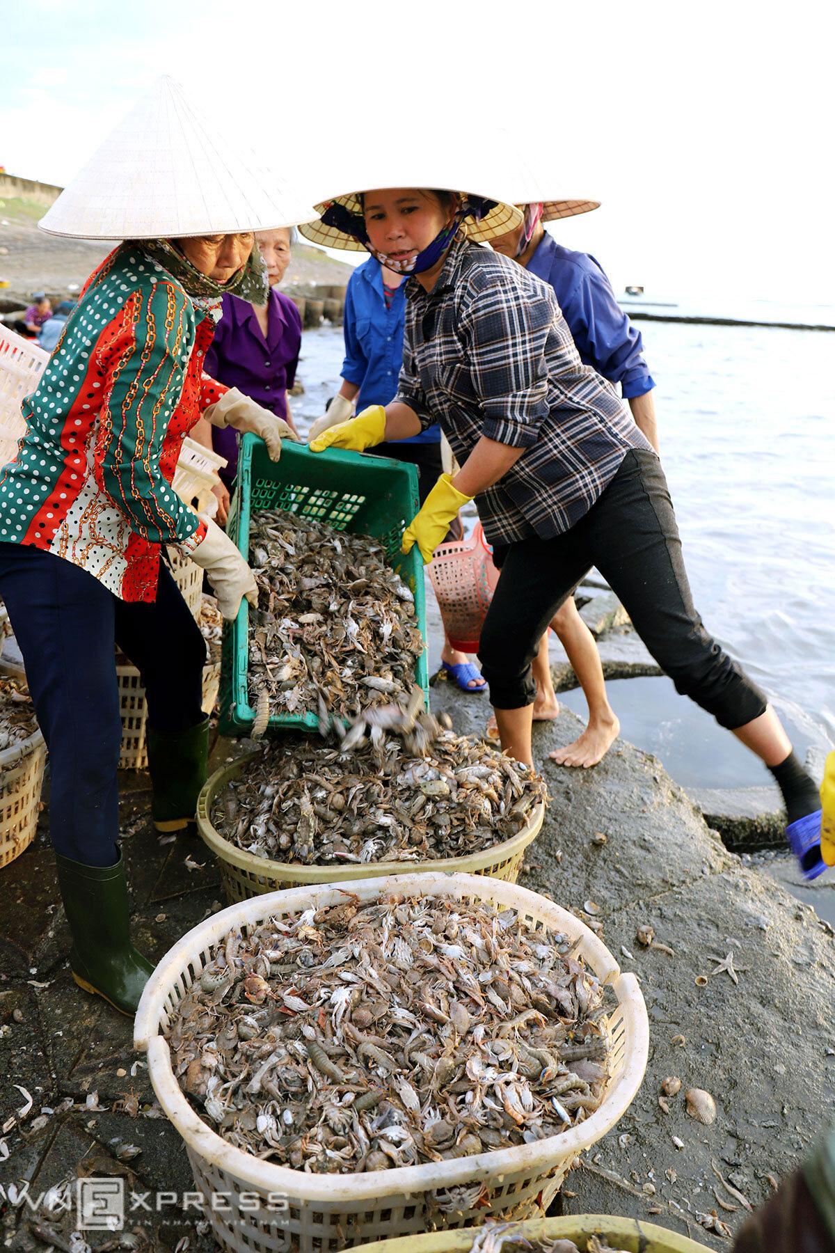 Chợ hải sản 600 năm tuổi bên bờ kè - Ảnh 8.