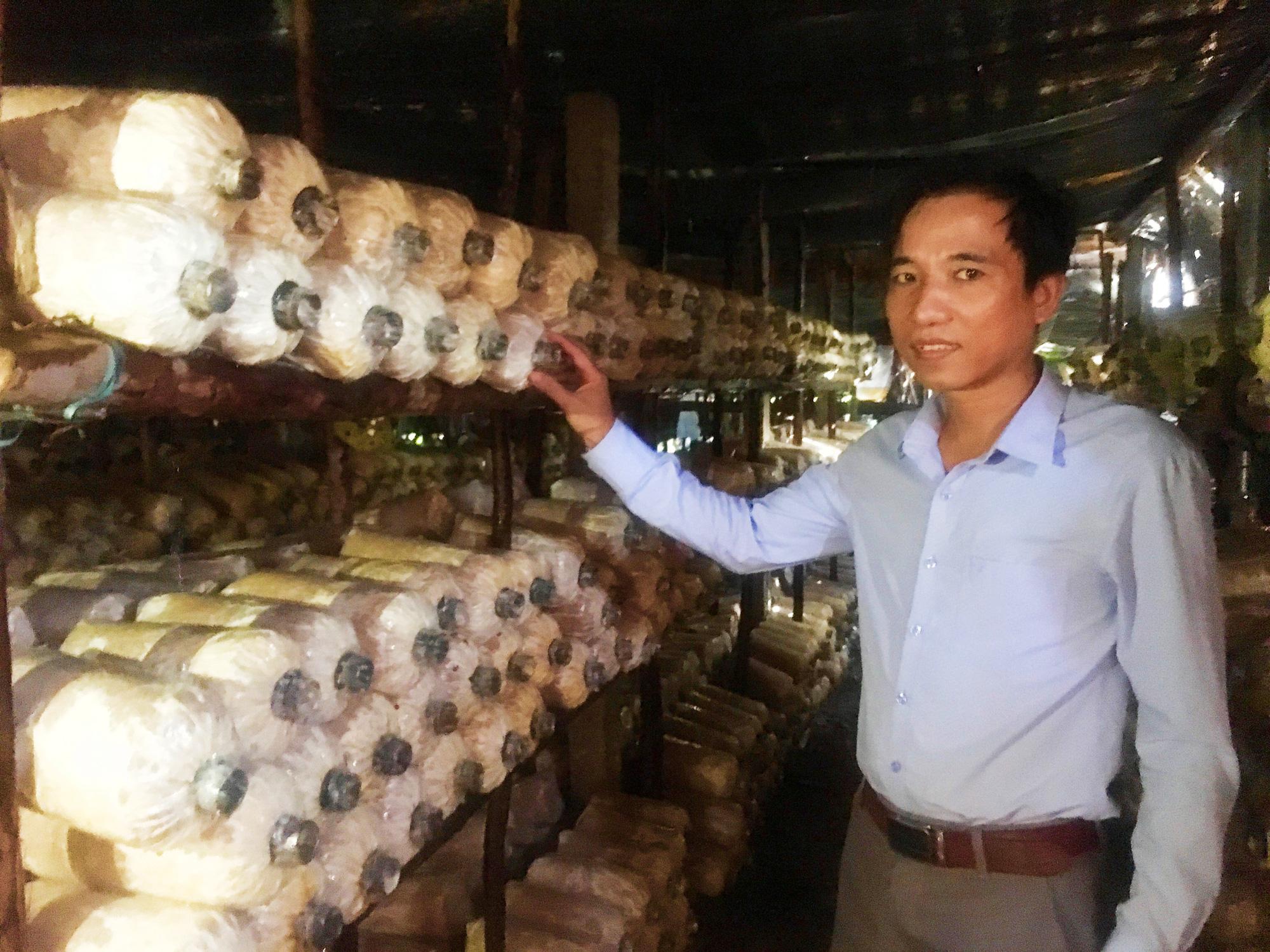 Quảng Bình: Bỏ công việc nhà nước, vợ chồng về quê trồng nấm lãi cả trăm triệu/năm  - Ảnh 4.
