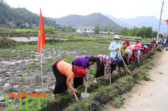 """Nông thôn mới Sơn La: Mường La """"thay da, đổi thịt"""" - Ảnh 2."""