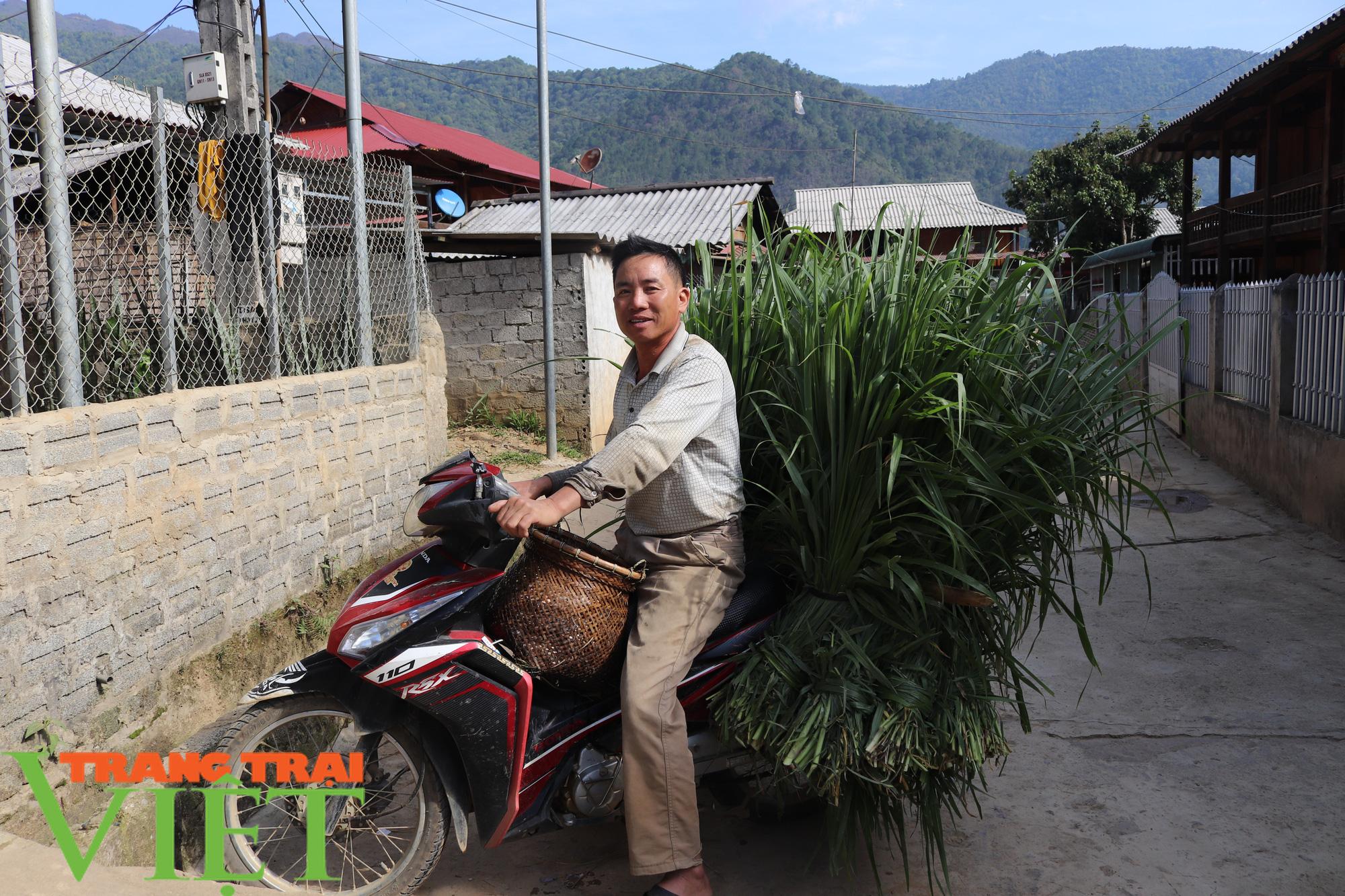 """Nông thôn mới Sơn La: Mường La """"thay da, đổi thịt"""" - Ảnh 5."""
