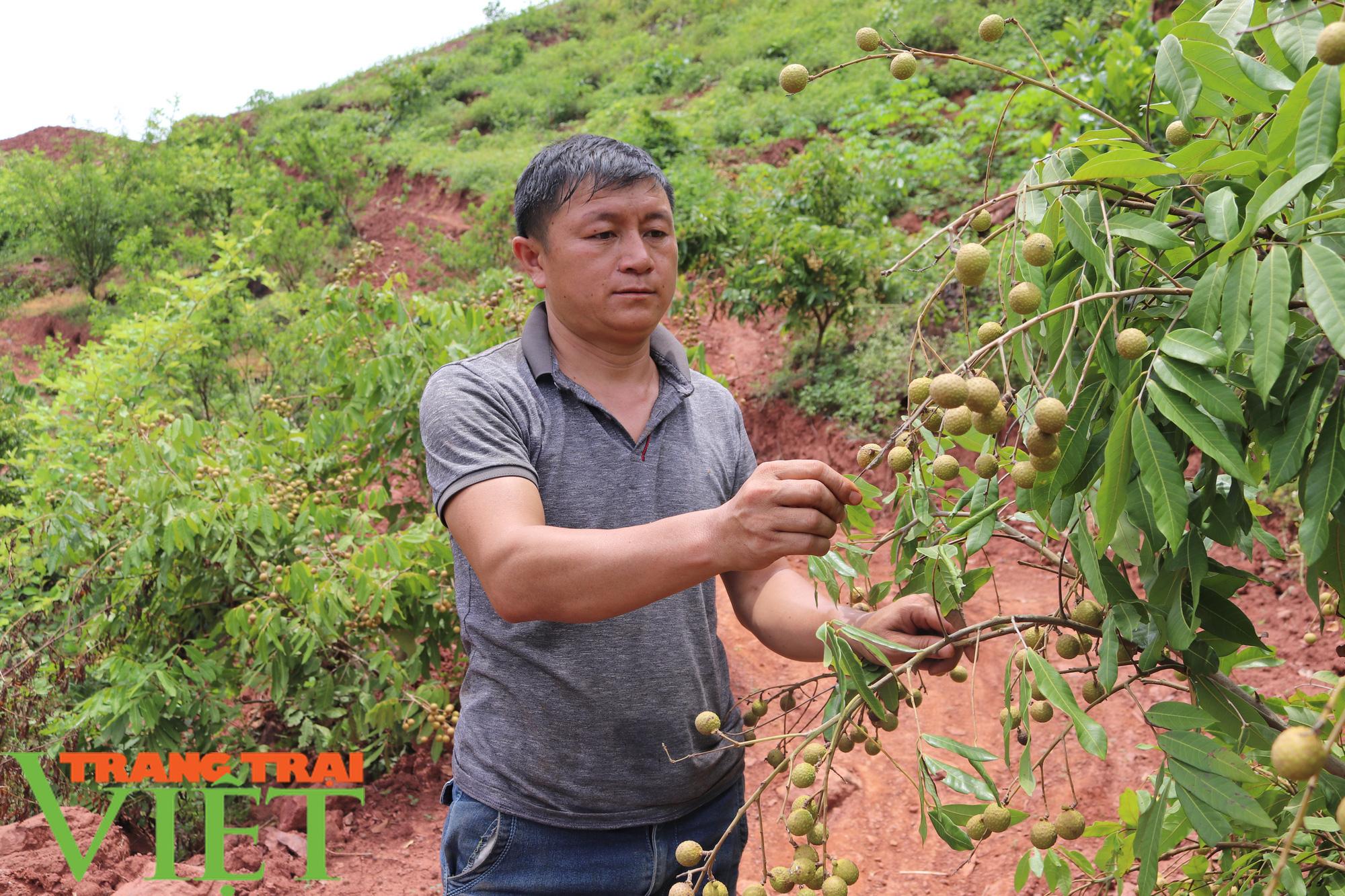 """Nông thôn mới Sơn La: Mường La """"thay da, đổi thịt"""" - Ảnh 8."""